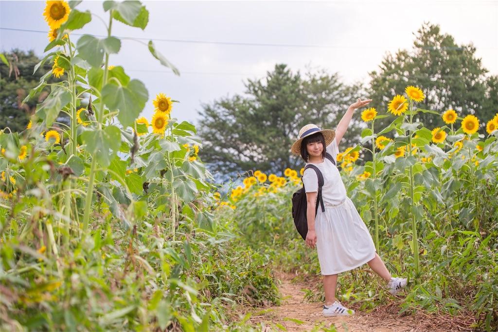 f:id:taketakeoda:20160903215043j:image