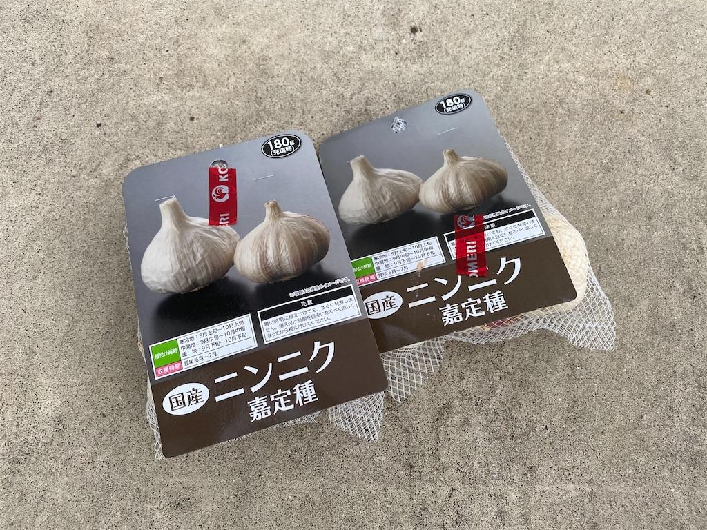 f:id:taketakezou3:20200926174936j:image