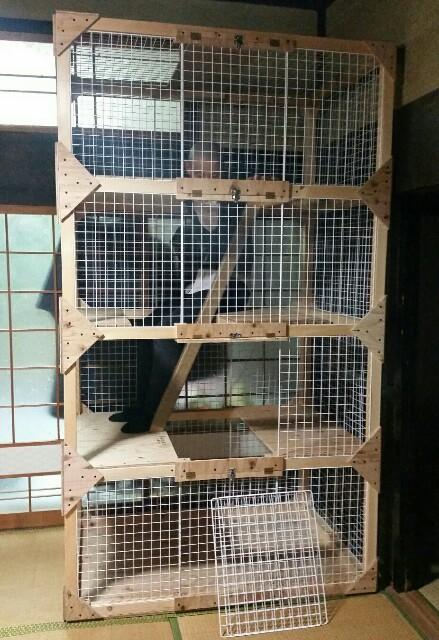f:id:taketsurutanuki:20161016014207j:image