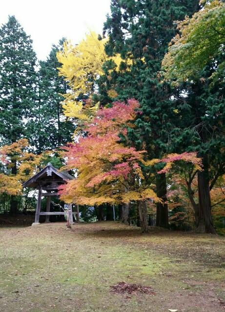 f:id:taketsurutanuki:20161114221125j:image