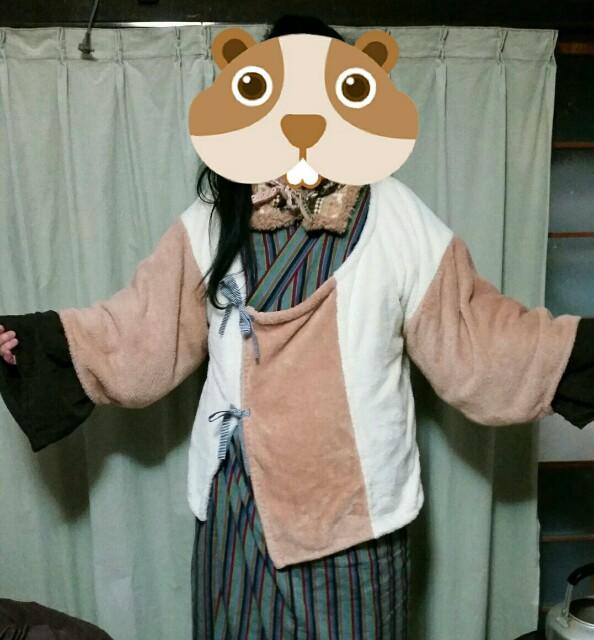 f:id:taketsurutanuki:20161227234601j:image