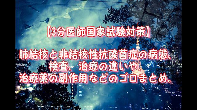 f:id:takettodan-99-akasiya:20190508004202p:plain