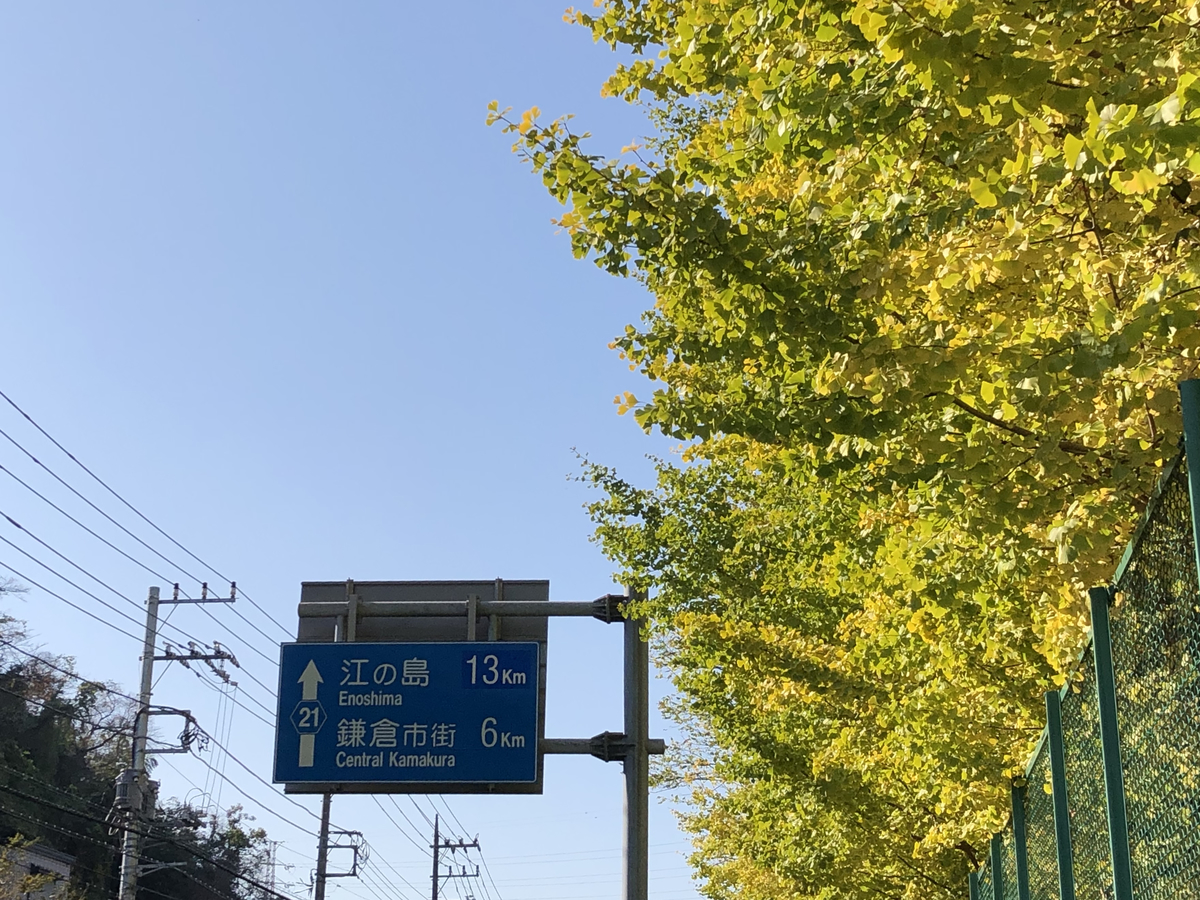 f:id:takeuma02:20201116143743j:plain