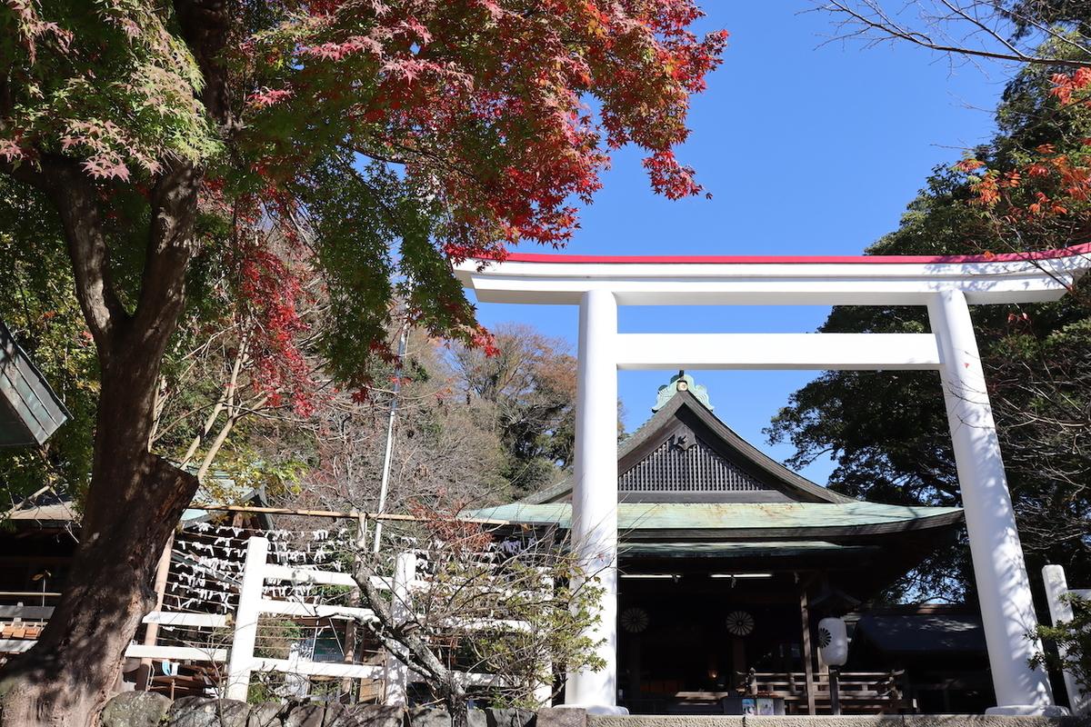 f:id:takeuma02:20201123152741j:plain