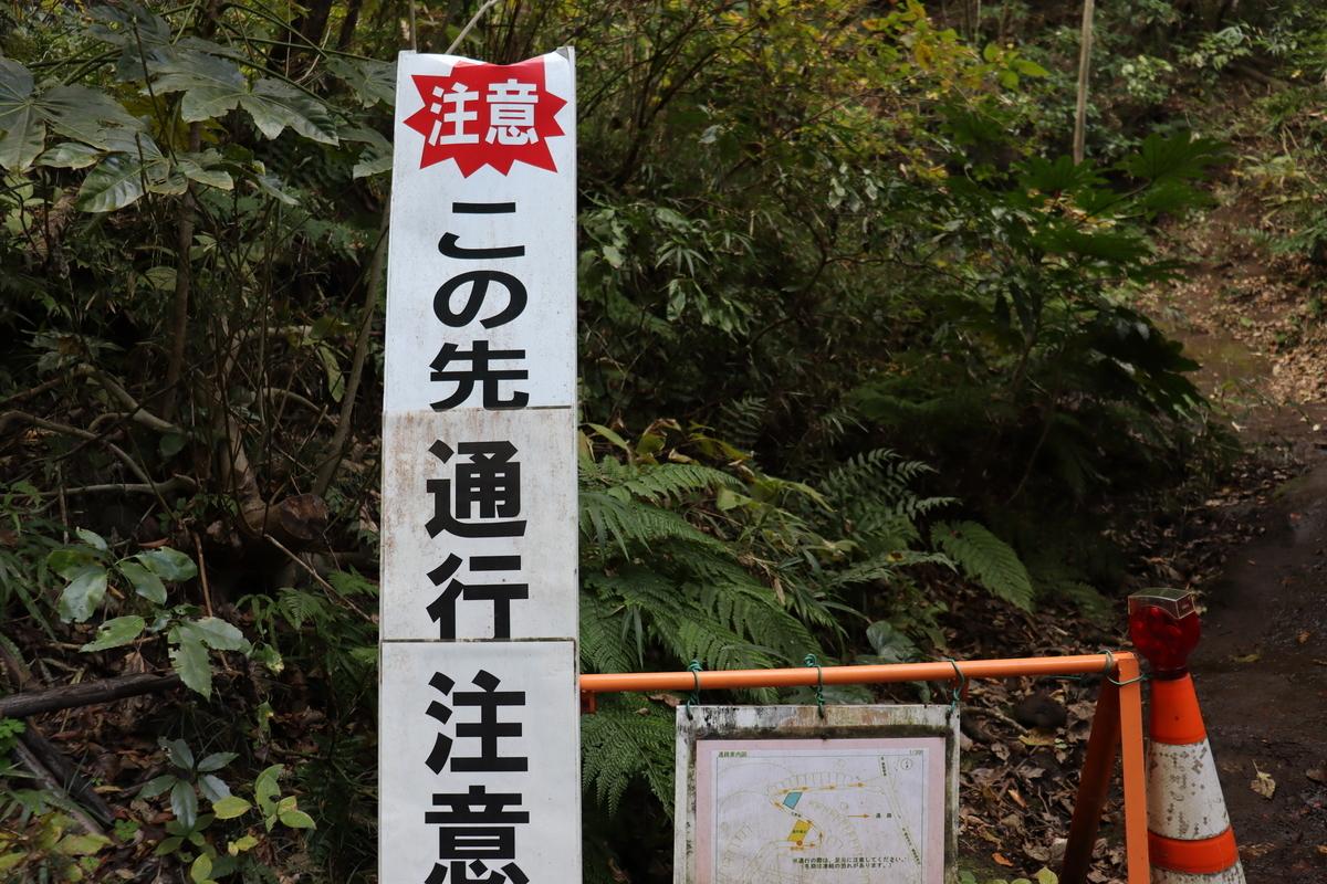 f:id:takeuma02:20201130151338j:plain