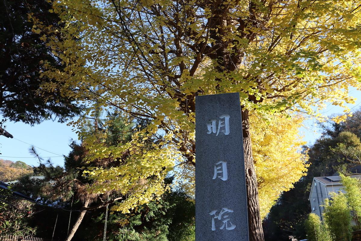 f:id:takeuma02:20201208091248j:plain