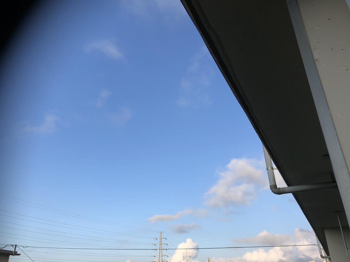 f:id:takeuma02:20210725053629j:plain