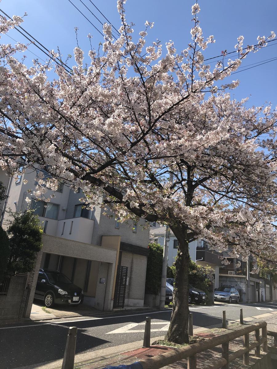 f:id:takeuma02:20210908094602j:plain