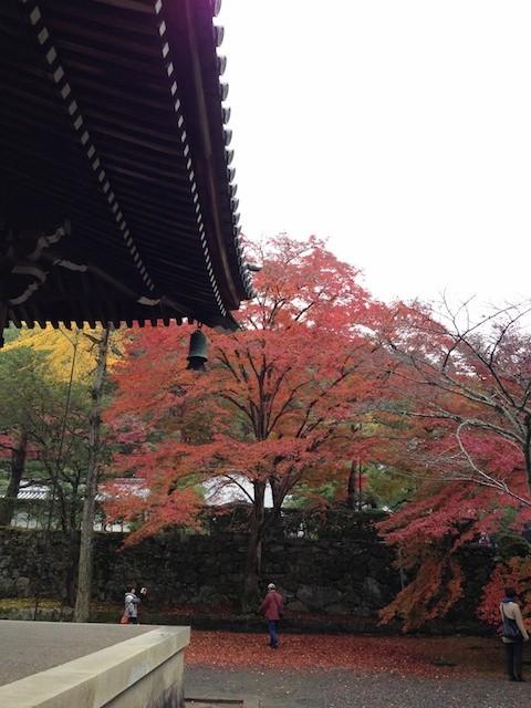f:id:takeyanBANANA:20121116110647j:image
