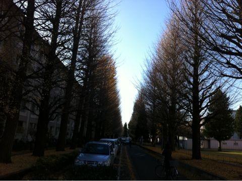 f:id:takigawa401:20101205153038j:image