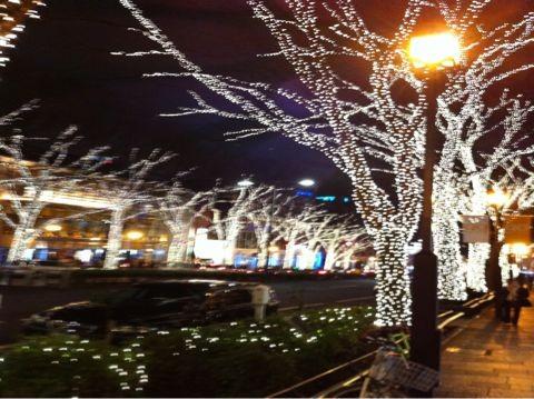f:id:takigawa401:20101214223105j:image