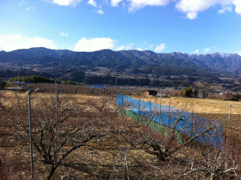 f:id:takigawa401:20110106144454j:image