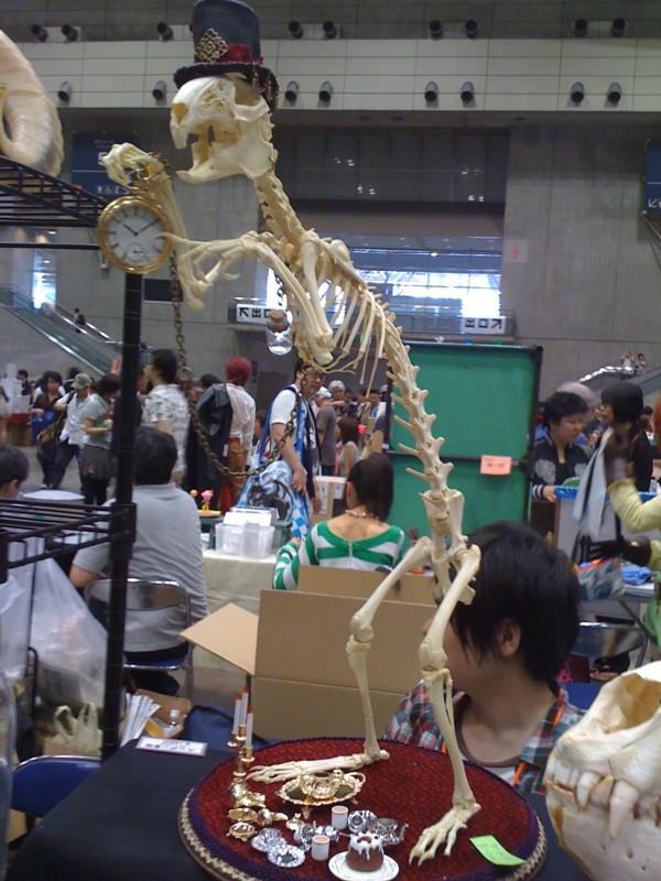 f:id:takigawa401:20111211234422j:image
