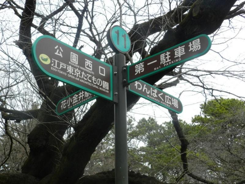 f:id:takigawa401:20120307131948j:image