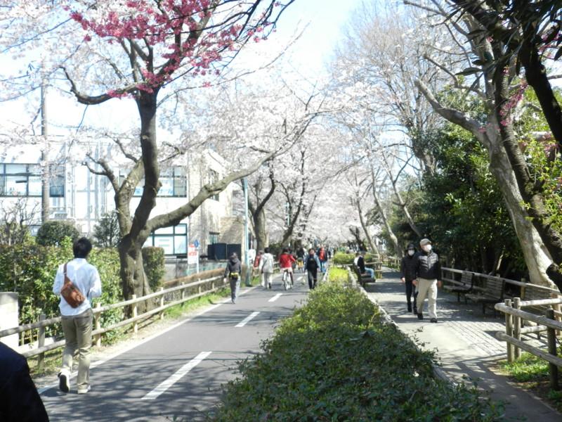 f:id:takigawa401:20120413111919j:image