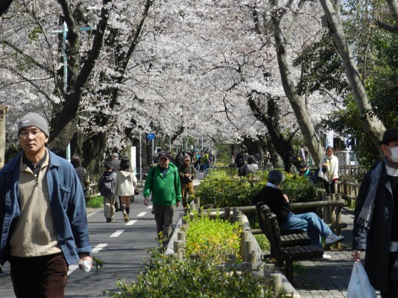 f:id:takigawa401:20120413111920j:image