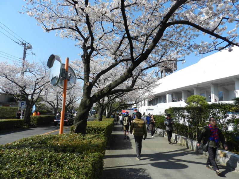 f:id:takigawa401:20120413111926j:image
