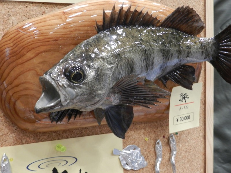 f:id:takigawa401:20120812055738j:image