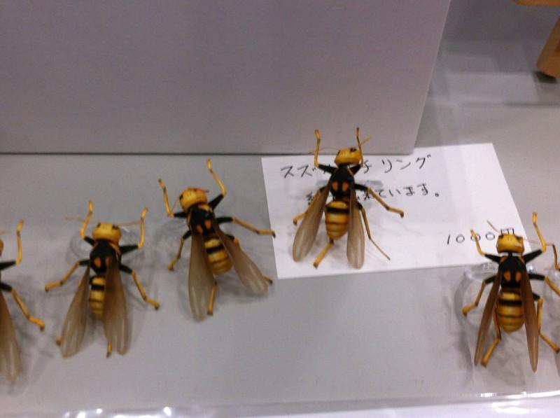 f:id:takigawa401:20120812055805j:image