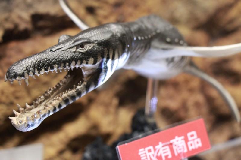 f:id:takigawa401:20130212035752j:image