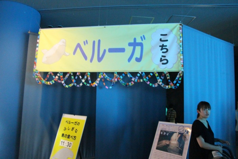 f:id:takigawa401:20130713145328j:image