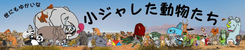 世にもゆかいな小ジャレた動物たち大集合