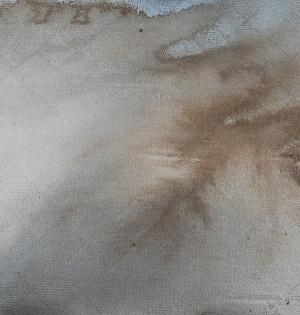 絨毯のシミ汚れ