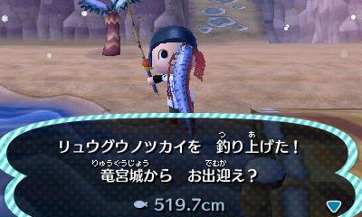 シーラカンス 魚影