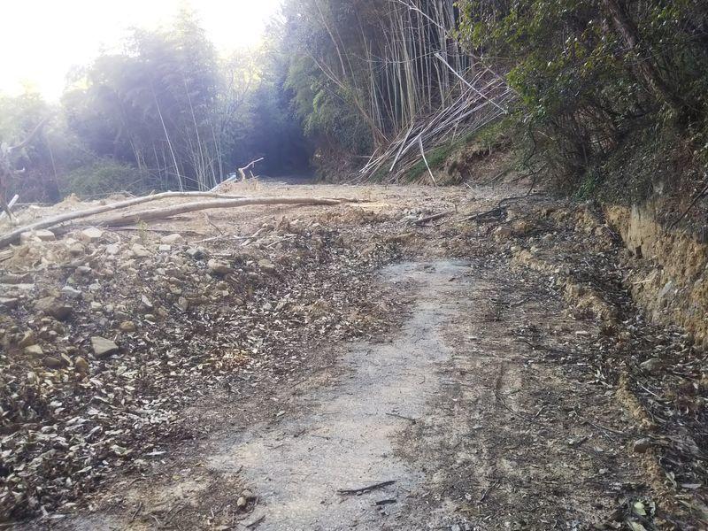 道路に覆い被さった山からの土砂