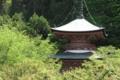 京都新聞写真コンテスト 新緑に包まれて