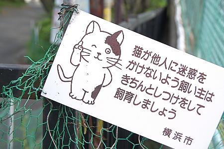 f:id:taknakayama:20080418155032j:image