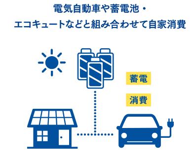 f:id:tako-no-mori:20210118024119p:plain