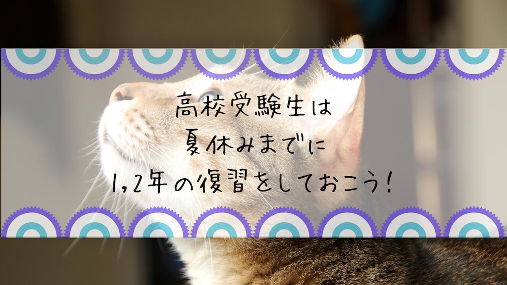 f:id:takoandwasabi:20190517181136p:image