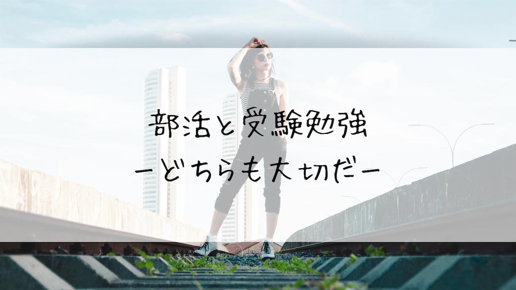f:id:takoandwasabi:20190602000035p:image