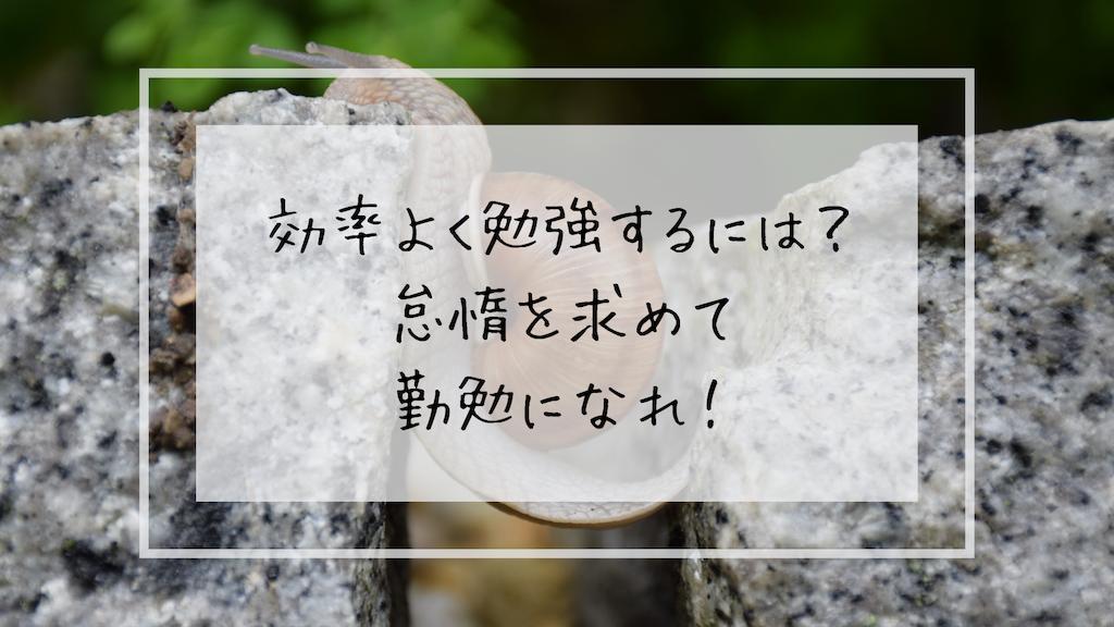 f:id:takoandwasabi:20190809002415p:image