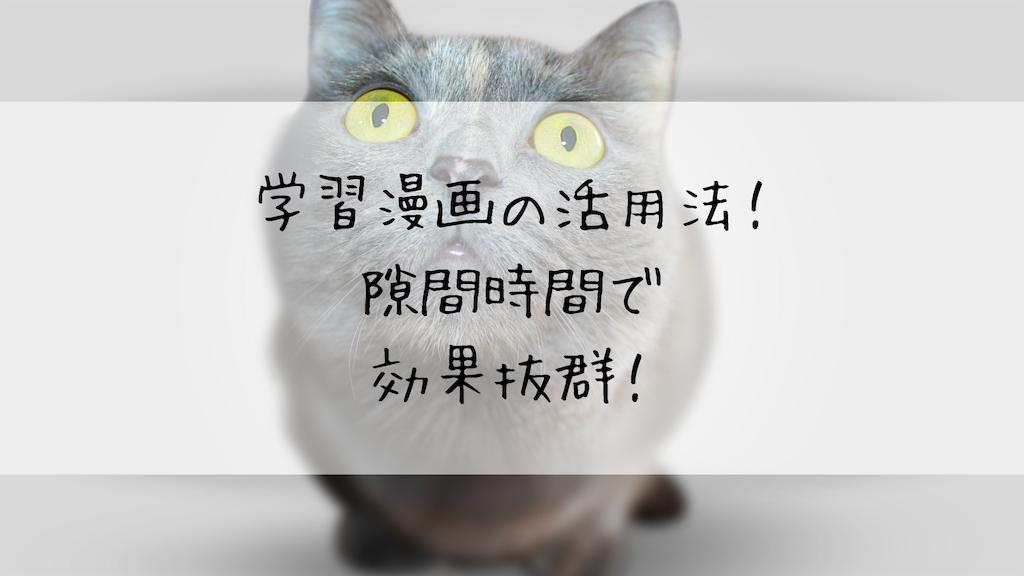 f:id:takoandwasabi:20190906233648p:image