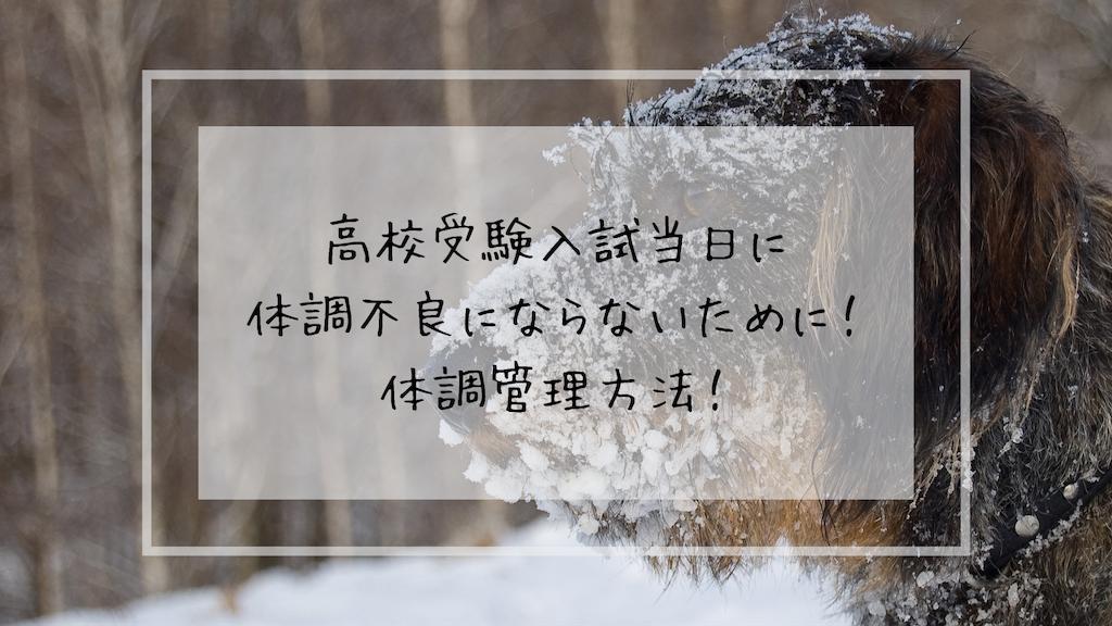 f:id:takoandwasabi:20190908144338p:image