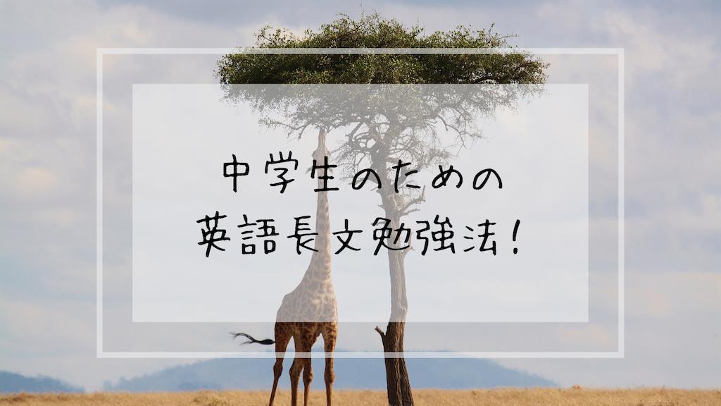 f:id:takoandwasabi:20191106010217p:image