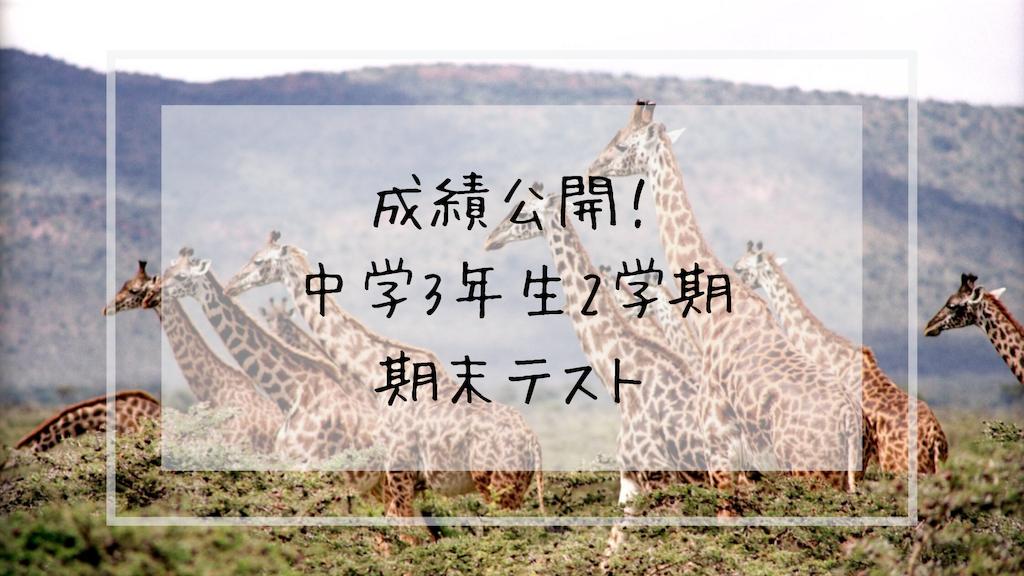 f:id:takoandwasabi:20191202233627p:image