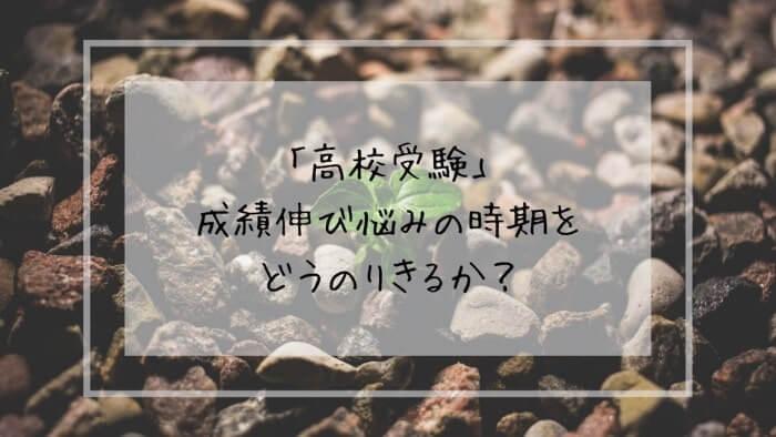 f:id:takoandwasabi:20200102090602j:plain