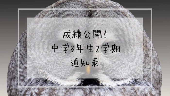 f:id:takoandwasabi:20200102092747j:plain