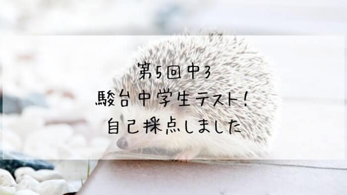 f:id:takoandwasabi:20200102092930j:plain