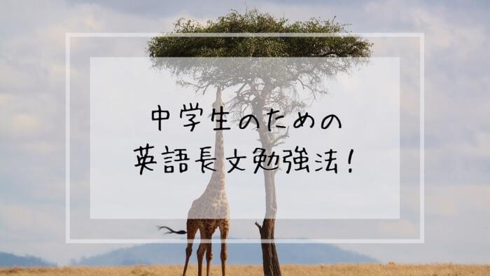f:id:takoandwasabi:20200102113435j:plain