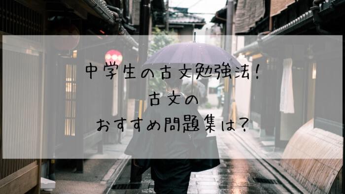 f:id:takoandwasabi:20200102121432j:plain