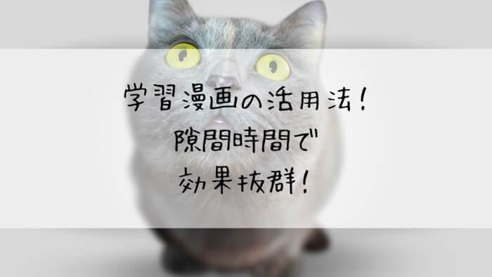 f:id:takoandwasabi:20200102124656j:plain