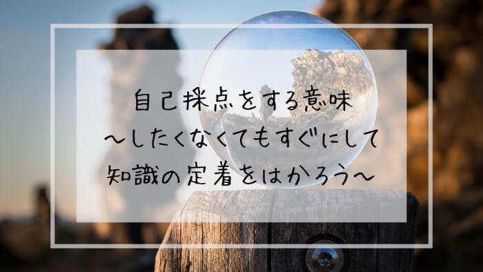 f:id:takoandwasabi:20200102131913j:plain