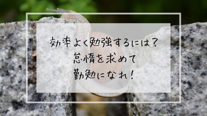 f:id:takoandwasabi:20200102144423j:plain