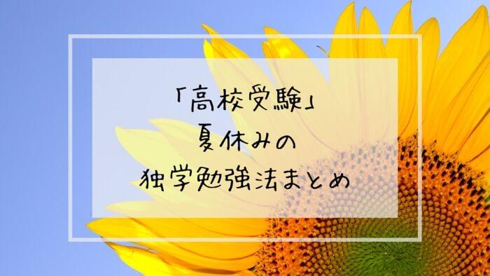 f:id:takoandwasabi:20200102152407j:plain