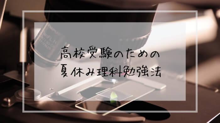 f:id:takoandwasabi:20200102223025j:plain
