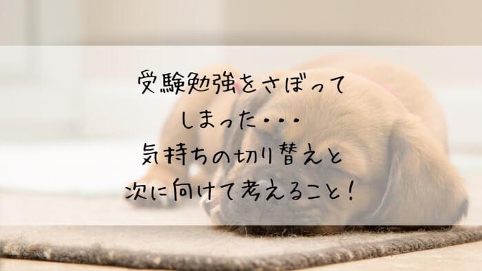 f:id:takoandwasabi:20200103012911j:plain